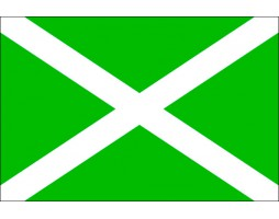 Флаг таможенных органов